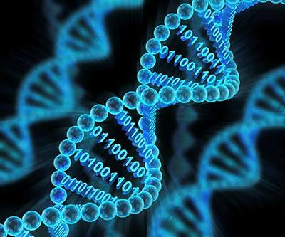 ذخیرهی خودکار اطلاعات برروی DNA ممکن شد.