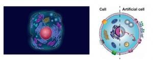 ابداع موفقیت آمیز سلول مصنوعی توسط گروهی از محققین در لندن